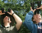 Glen Canyon Seeks Volunteers for Christmas Bird Count