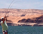 Lake Powell Fish Report – May 16, 2018