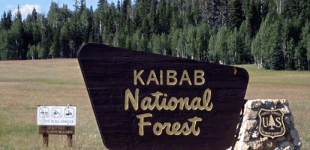 Kaibab National Forest; March Archaeology Month Events