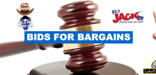 Bids  for  Bargains  2017!