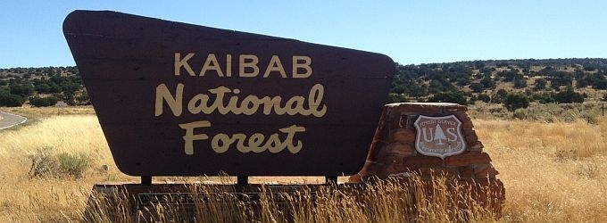 Public Input Needed on Ecological Project @ Kaibab